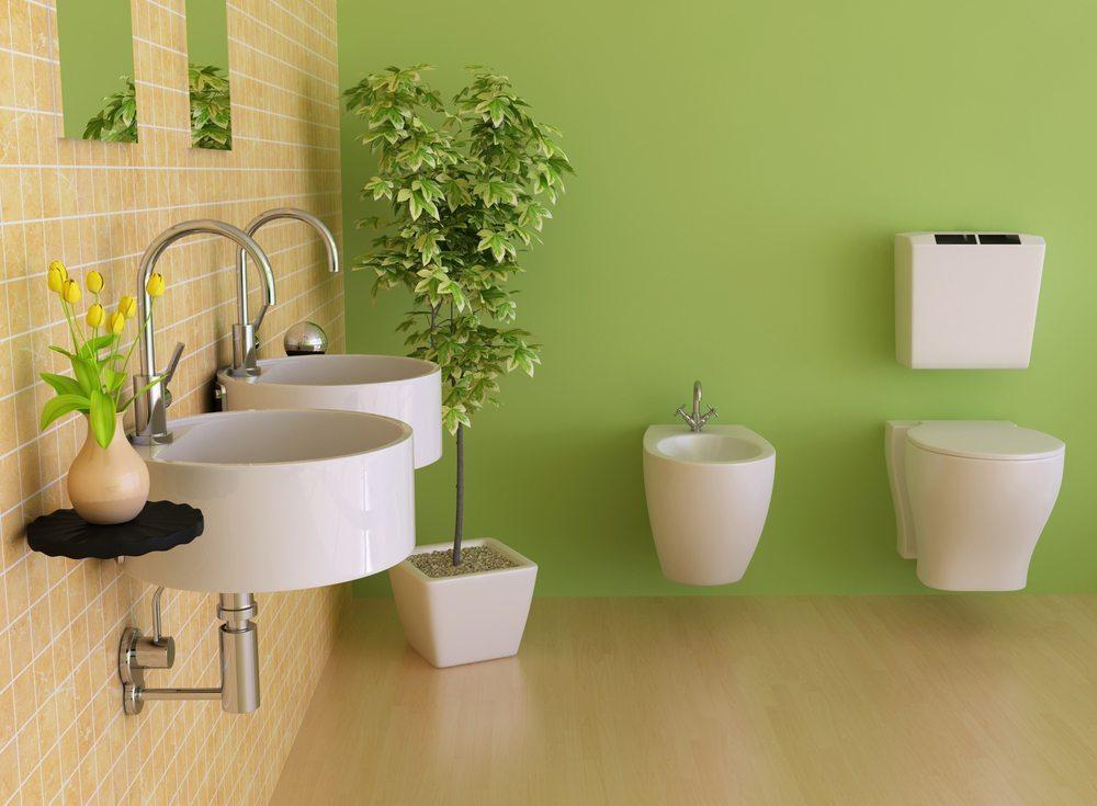 Im Badezimmer ist es in der Regel sehr feucht und warm – ein Klima, das viele Pflanzen bevorzugen! (Bild: robinimages2013 / Shutterstock.com)