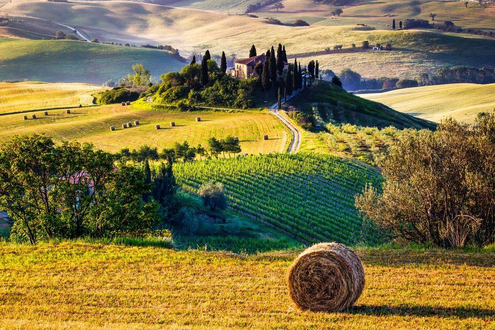 Träumen Sie von der Toskana! (Bild: Francesco R. Iacomino / Shutterstock.com)