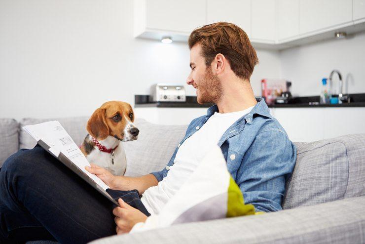 Gemütliche Stunden auf dem Sofa ... (Bild: © Monkey Business Images shutterstock.com)