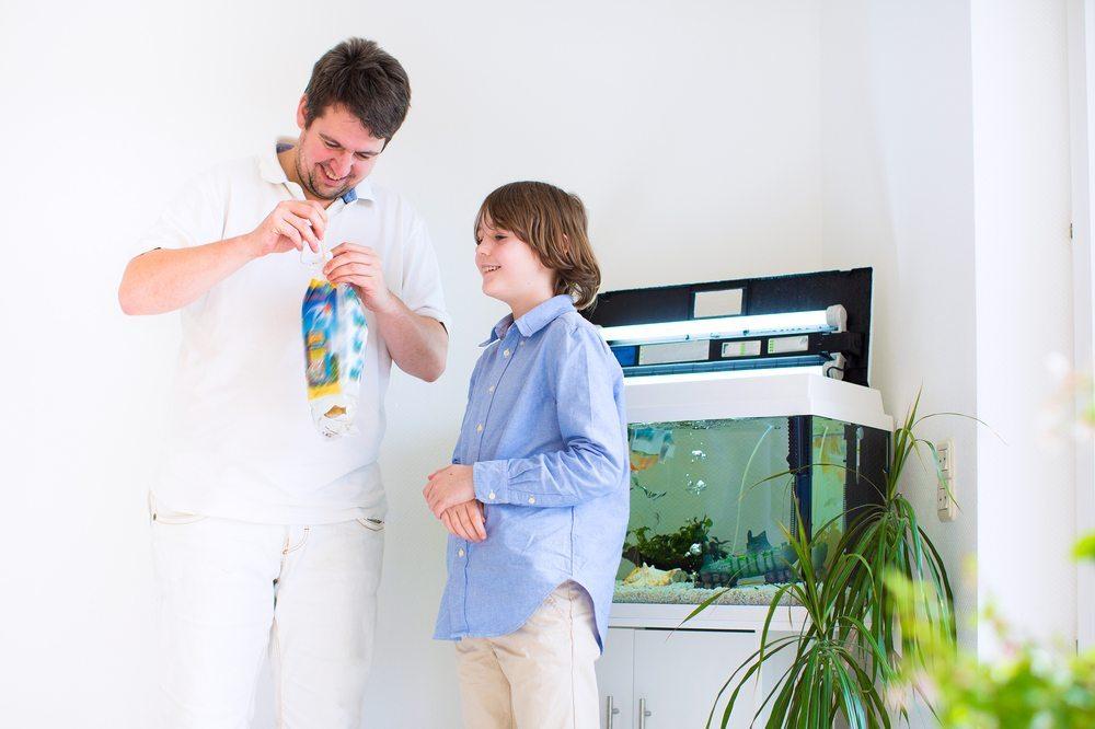 Die Haltung von Haustieren in Aquarien ist in den meisten Mietwohnungen problemlos möglich. (Bild: © FamVeld - shutterstock.com)
