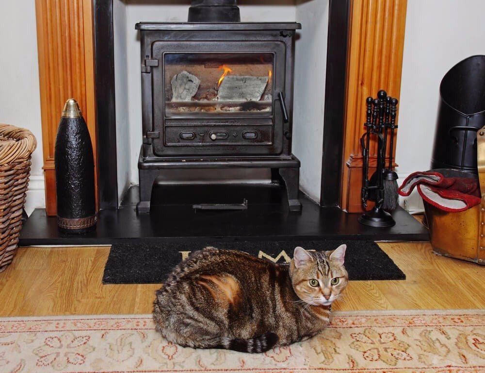 Anders als der offene Kamin braucht der Kaminofen keinen eigenen Schornstein (Bild: © Chrislofotos - shutterstock.com)