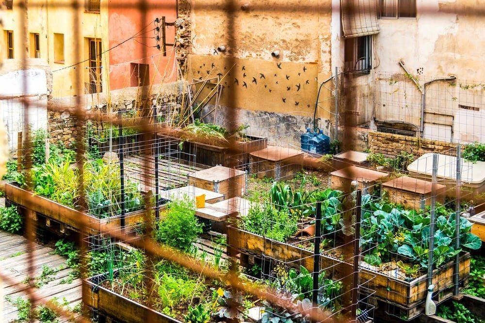 Durch Urban Gardening entstehen eigene Miniaturwelten. (Bild: © Diego Moreno Delgado - shutterstock.com)