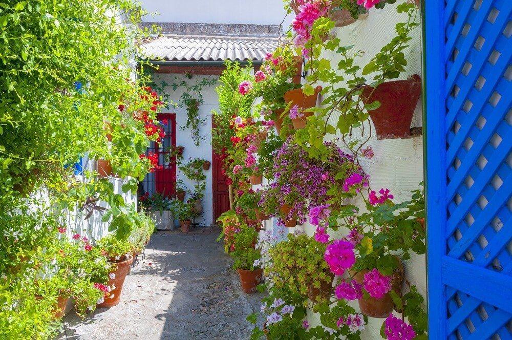 Durch die regelmässigen Düngergaben erfreuen Sie sich den ganzen Sommer über an den herrlichen Blüten. (Bild: © ALCE - fotolia.com)