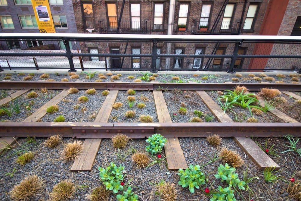 New York wird grün (Bild: © littleny - shutterstock.com)