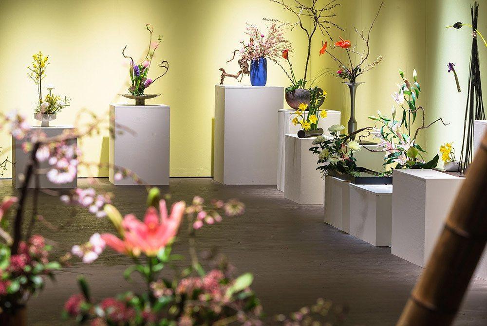 Poesie des Fruehlings: Ikebana International Chapter 214. (Bild: Giardina)