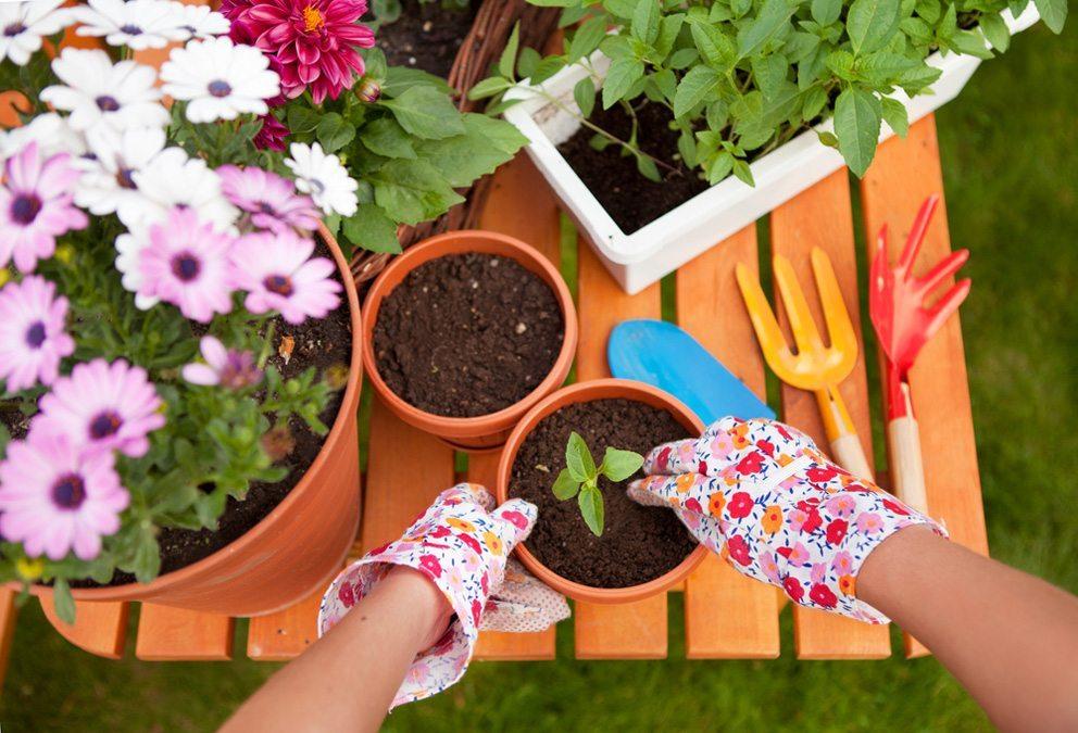 Bei einer Outdoor-Aktivität setzt eine sofortige positive Wirkung auf die Psyche ein. (Bild: NinaMalyna – Shutterstock.com)