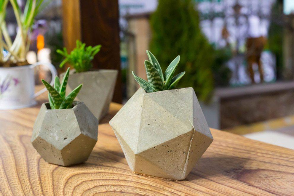 Blumentöpfe aus Beton sind in zahlreichen Formen und Grössen erhältlich. (Bild: Little honey – Shutterstock.com)