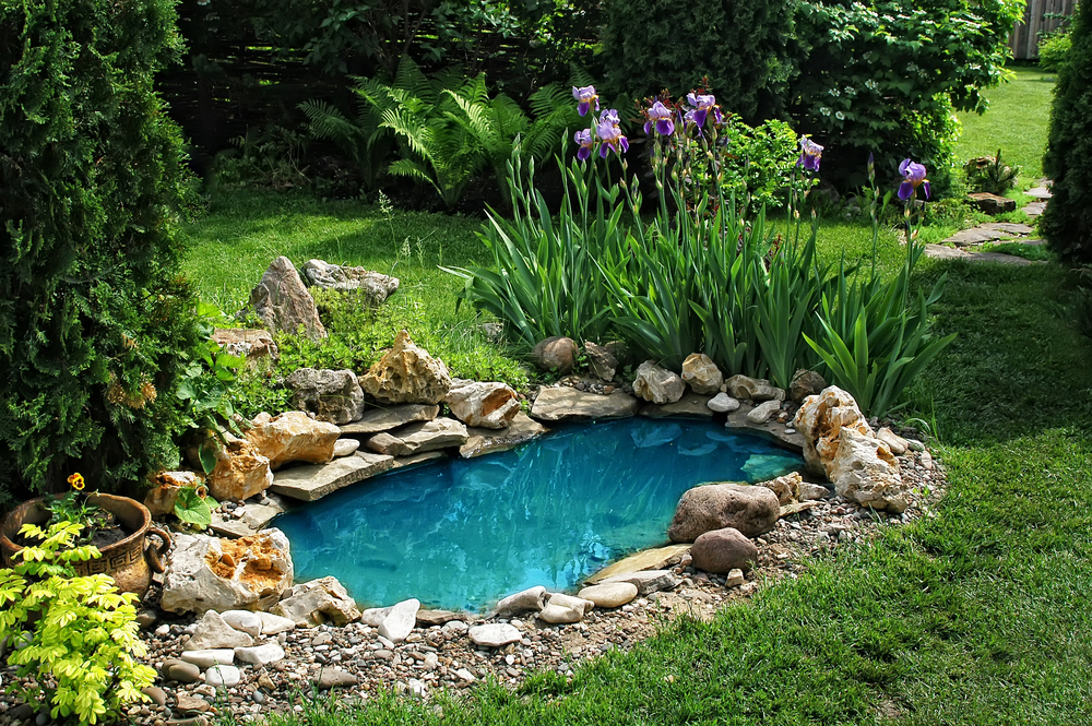 Mit der richtigen Pflege Freude am Gartenteich erhalten (Bild: Zhukov Oleg - shutterstock.com)